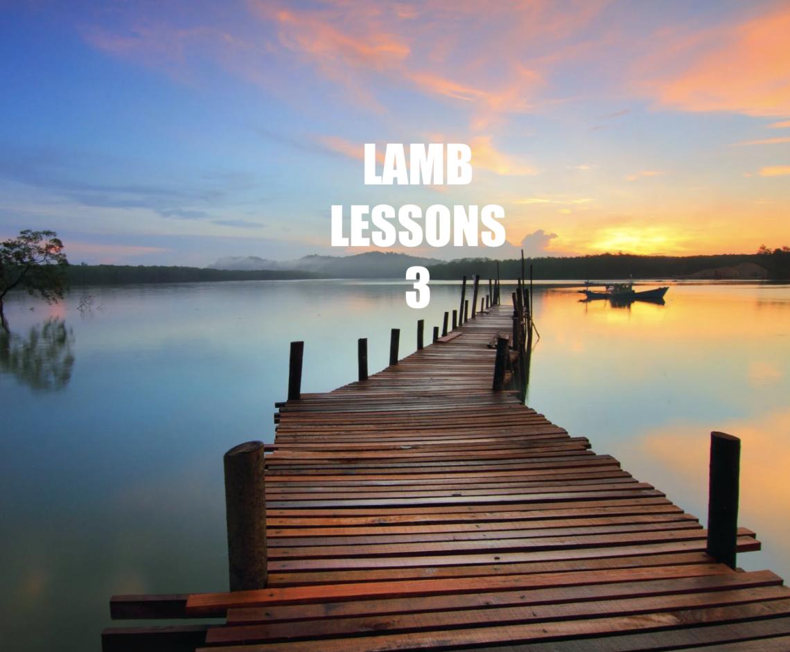 Lamb Lessons 3