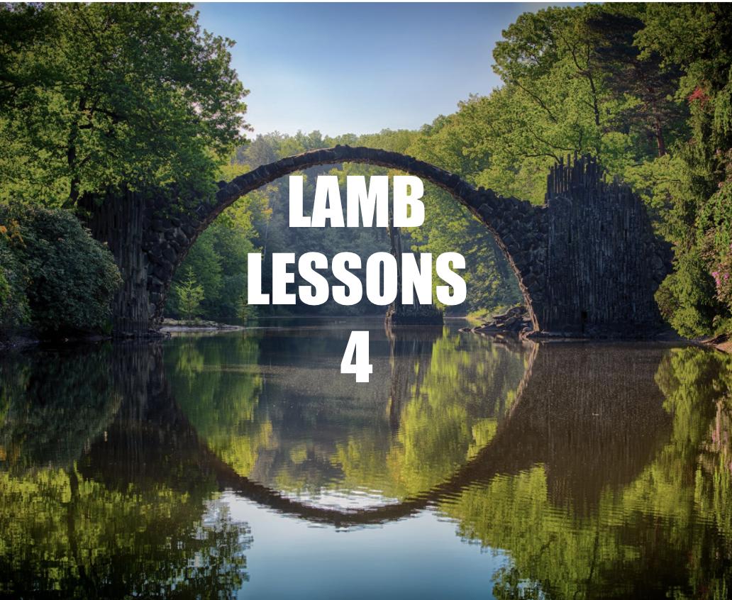Lamb Lessons